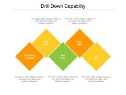 Drill Down Capability Ppt Powerpoint Presentation Inspiration Background Image Cpb
