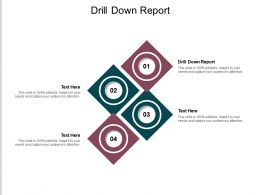 Drill Down Report Ppt Powerpoint Presentation Outline Examples Cpb
