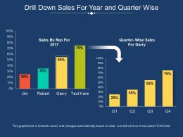 Drill Down Sales For Year And Quarter Wise