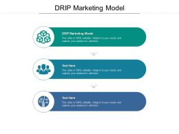 DRIP Marketing Model Ppt Powerpoint Presentation Outline Samples Cpb