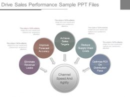 Drive Sales Performance Sample Ppt Files