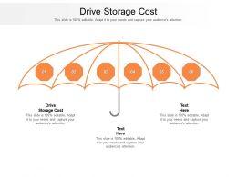 Drive Storage Cost Ppt Powerpoint Presentation Slides Smartart Cpb