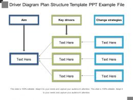 Driver Diagram Plan Structure Template Ppt Example File