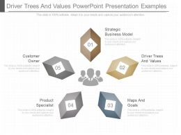 Driver Trees And Values Powerpoint Presentation Examples