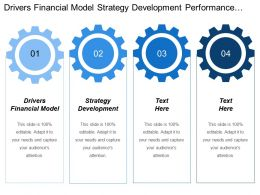 Drivers Financial Model Strategy Development Performance Development Process Optimization