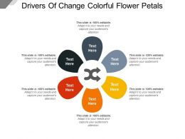 Drivers Of Change Colorful Flower Petals
