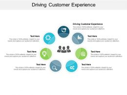 Driving Customer Experience Ppt Powerpoint Presentation Portfolio Slide Download Cpb