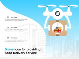 Drone Icon For Providing Food Delivery Service