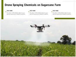 Drone Spraying Chemicals On Sugarcane Farm