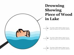 Drowning Showing Piece Of Wood In Lake