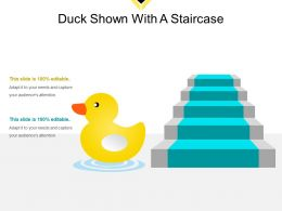 Duck Shown With A Staircase