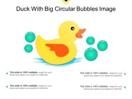 Duck With Big Circular Bubbles Image