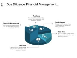 due_diligence_financial_management_organization_chart_chargeback_model_cpb_Slide01