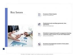Due Diligence For Deal Execution Key Issues Ppt Summary