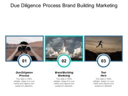 Due Diligence Process Brand Building Marketing Collaborative Strategy Cpb