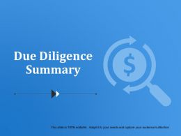 Due Diligence Summary Presentation Diagrams