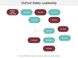 Dupont Safety Leadership Ppt Powerpoint Presentation Designs Cpb