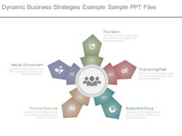 Dynamic Business Strategies Example Sample Ppt Files