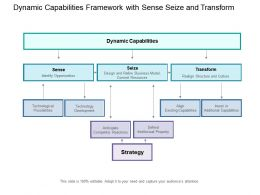 Dynamic Capabilities Framework With Sense Seize And Transform
