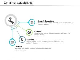 Dynamic Capabilities Ppt Powerpoint Presentation Ideas Format Ideas Cpb