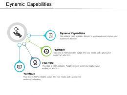 Dynamic Capabilities Ppt Powerpoint Presentation Ideas Format Ideas Cpb
