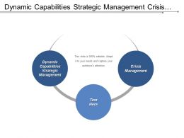 Dynamic Capabilities Strategic Management Crisis Management Organization Environment Cpb