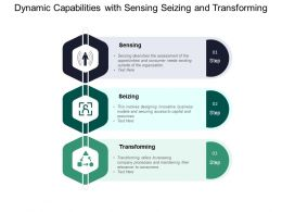 Dynamic Capabilities With Sensing Seizing And Transforming