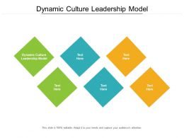 Dynamic Culture Leadership Model Ppt Powerpoint Presentation Outline Images Cpb