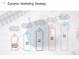 Dynamic Marketing Strategy Ppt Powerpoint Presentation Infographics Layouts Cpb