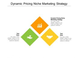 Dynamic Pricing Niche Marketing Strategy Ppt Powerpoint Presentation Infographics Summary Cpb