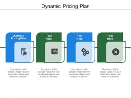 Dynamic Pricing Plan Ppt Powerpoint Presentation Infographics Infographics Cpb