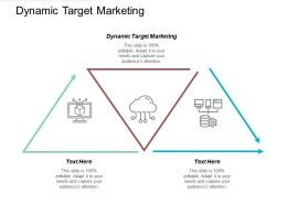 Dynamic Target Marketing Ppt Powerpoint Presentation File Format Cpb