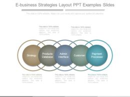 E Business Strategies Layout Ppt Examples Slides