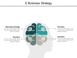 E Business Strategy Ppt Powerpoint Presentation Outline Icons Cpb