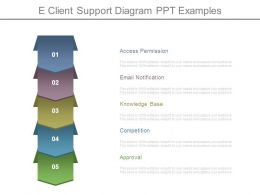 E Client Support Diagram Ppt Examples