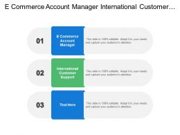 E Commerce Account Manager International Customer Support Supply Chain Administrator