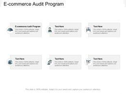 E Commerce Audit Program Ppt Powerpoint Presentation Styles Guidelines Cpb