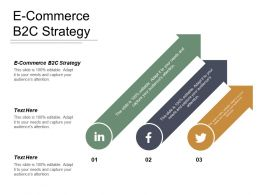 E Commerce B2c Strategy Ppt Powerpoint Presentation File Graphics Tutorials Cpb