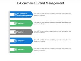 E Commerce Brand Management Ppt Powerpoint Presentation Styles Example Cpb