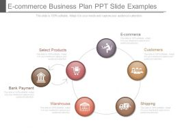 E Commerce Business Plan Ppt Slide Examples
