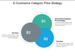 E Commerce Category Price Strategy Ppt Powerpoint Presentation Gallery Graphics Example Cpb