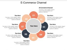 E Commerce Channel Ppt Powerpoint Presentation File Structure Cpb