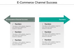 E Commerce Channel Success Ppt Powerpoint Presentation Styles Tips Cpb