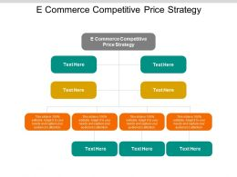 E Commerce Competitive Price Strategy Ppt Powerpoint Presentation Ideas Cpb