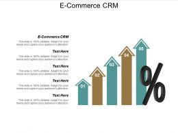 E Commerce CRM Ppt Powerpoint Presentation Gallery File Formats Cpb