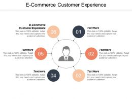 E Commerce Customer Experience Ppt Powerpoint Presentation Ideas Background Designs Cpb