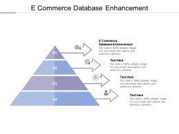 E Commerce Database Enhancement Ppt Powerpoint Presentation Slides Ideas Cpb