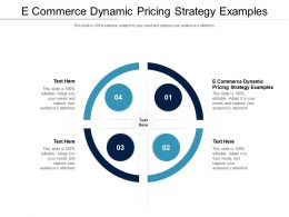 E Commerce Dynamic Pricing Strategy Examples Ppt Infographics Designs Cpb