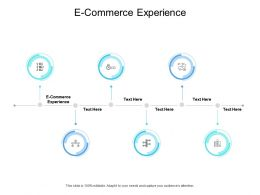 E Commerce Experience Ppt Powerpoint Presentation File Icon Cpb