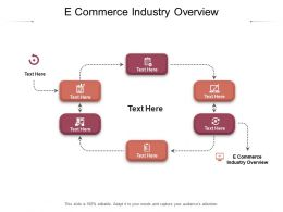 E Commerce Industry Overview Ppt Powerpoint Presentation Professional Graphics Cpb